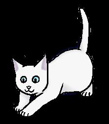 Sneeuwkit (OS).kitten