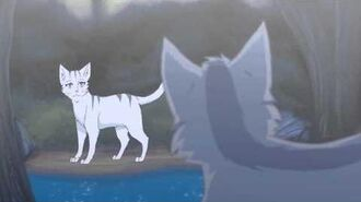 Graystripe x Silverstream AMV- Hymn for the Missing