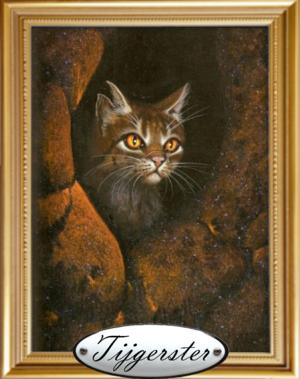 Tijgerstersportret