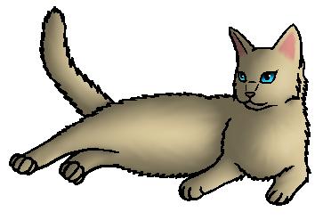 Madelief.moederkat