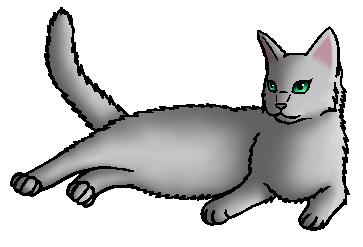 Dauwbloem.moederkat