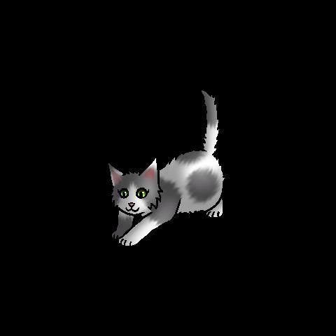 <center><small>Kitten versie</small></center>