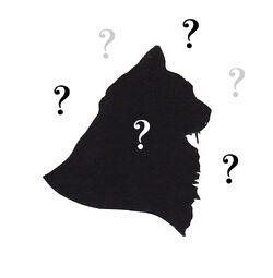 Cat silhouette copy