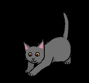 Arendkit.kitten