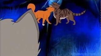 MAP Ashfur & Squirrelflight Love is just a lie COMPLETE