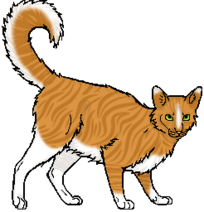 Lionsong.adult