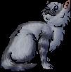 Wolfstrike.kitten
