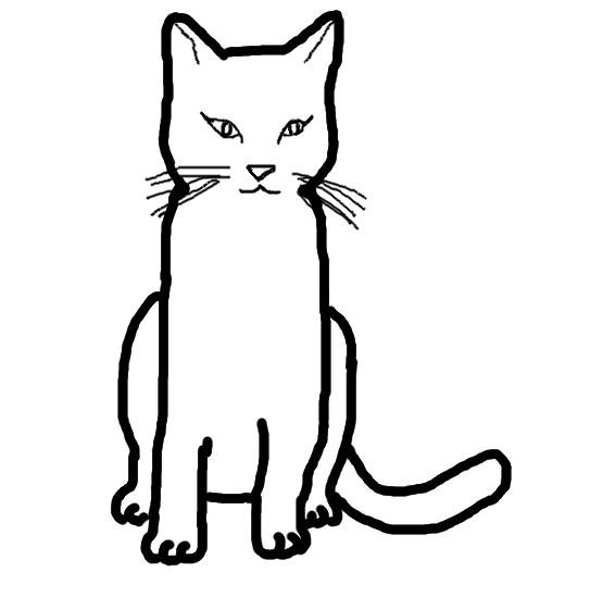Bild Lrg 119 Katze Colorpoint Mischling Jpg Warrior Cats Rpg