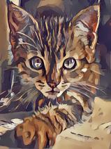 Kittypaint