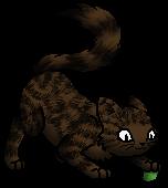 Snailpaw K.Spooky