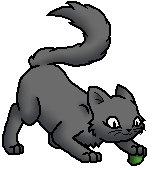 Smokepaw (WC) K.Spooky