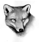 Fox.SotC