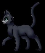 Blaustern.Anführer (alternativ b).KittyVanilla