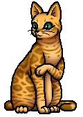 Leopardstar.SV.G