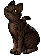 Tigerheart.S