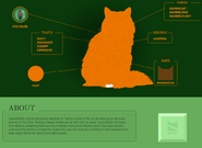 Squirrelflight Website