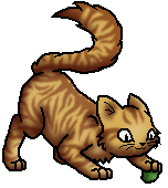 Lion'sRoar.Junges.byLeo