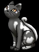 White Tail.S.byTau
