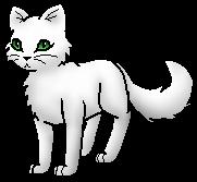 Mottenflug Warrior Cats Wiki Fandom Powered By Wikia