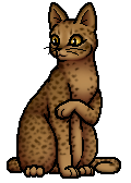 Leopardstar.SV.B