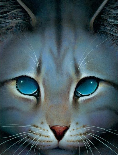 Prefix Warrior Cats White