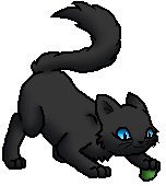 Nightpaw (RC) K.Spooky
