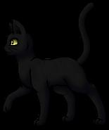 RavenPelt.Leader.byCurly
