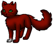 Squirrelflight.DR.byLeo