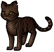 Tigerheart.K