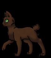 Rabbitstar.Leader.byCurly