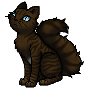 Hawkfrost.Apprentice.byCurly