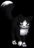 Berryheart R.Spooky