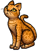 Leopardpaw Redone