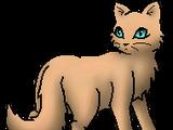 Minka (S2)