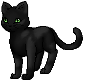 Leopardfoot.byStar