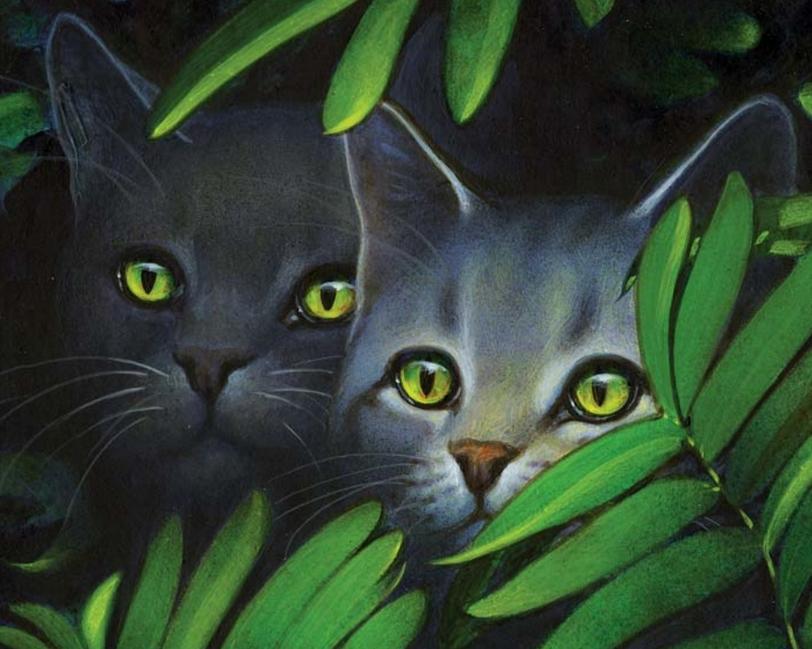 Warrior Cats Feuer Und Eis Wikipedia