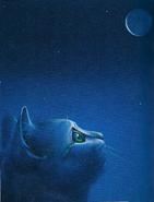 TUG-Half Moon