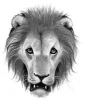 LöwenClan