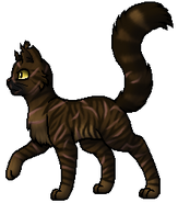 Tigerstar.Leader.byCurly