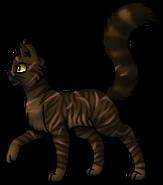 Tigerstar.Leader.byCurly