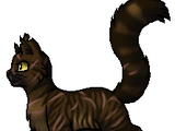Tigerstern (S1)