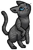 Mintfur.Kittypet.byCurly