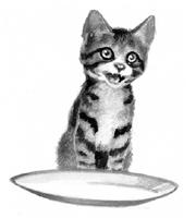 Kittypet.SotC