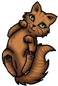 Frecklewish.Kittypet.alt.byCurly