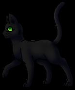 Darkstar.A.Tiger