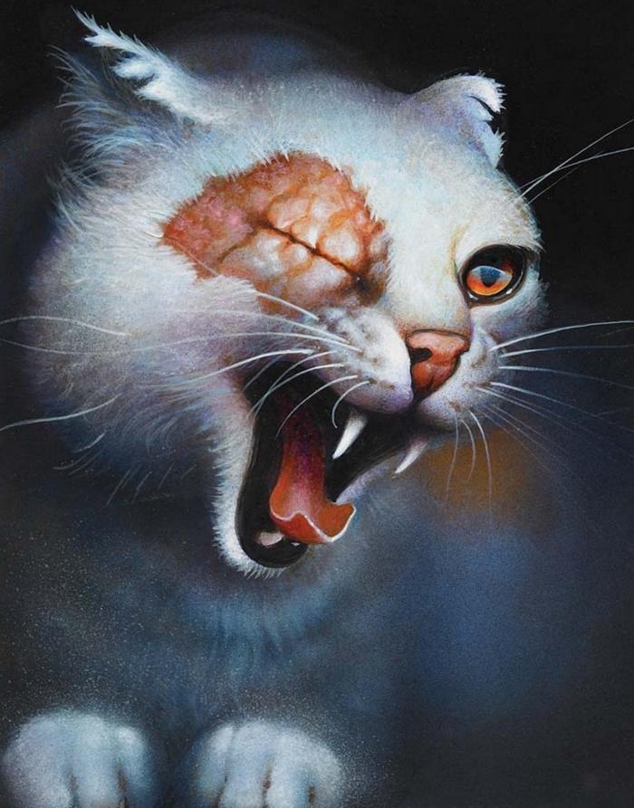 Warrior Cats Filme Die Letzten Geheimnisse