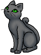 Willowpaw (WC)