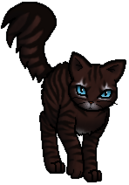 Hawkfrost.Rogue.TUG.byCurly