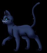 Blaustern.Anführer (alternativ c).KittyVanilla