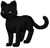 RavenPelt.Warrior.byCurly
